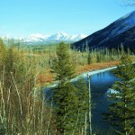 North Fork of the Flathead